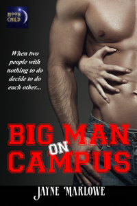 Big Man on Campus cover
